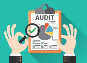 Read more about the article Call for Audit Committee